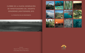 N-Gen Report_2012_Esp_Cover
