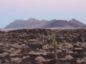 Paisaje de la Reserva de la Biosfera El Pinacate/Gran Desierto del Altar