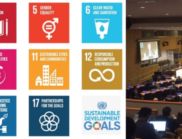 Notes from [a different] field: The United Nations Oceans Conference