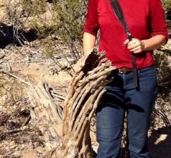 Gita_saguaro_crop